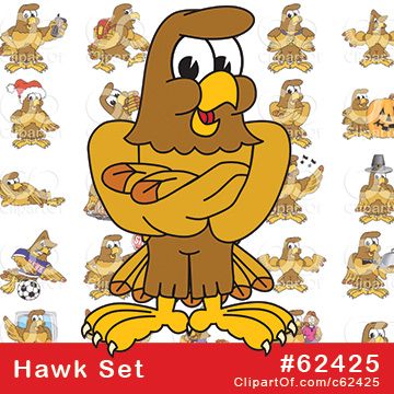 Hawk Mascots - Royalty Free Clip Art Collection #62425