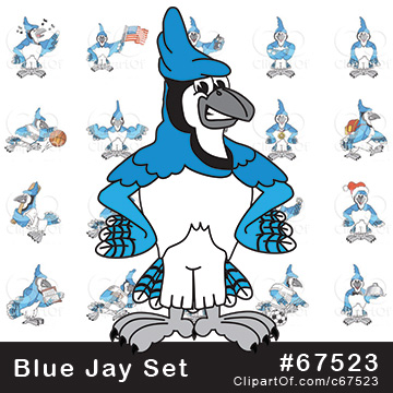Blue Jay Mascots [Complete Series]